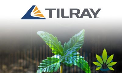 Tilray (TLRY) CEO to Speak at Barclays Consumer Conference in Boston on September 5th
