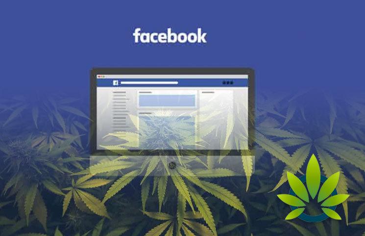 Top 6 Cannabis Facebook Fan Pages All Marijuana Advocates Should Follow