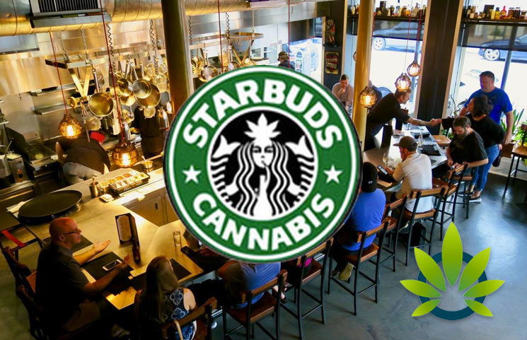 Sheffield, UK Officially Welcomes Cannabis-Centric Café, 'Starbuds', Featuring CBD Pasta