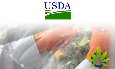USDA Is Working Hard to Establish Testing Rules for THC in Hemp, But the Struggle Is Real