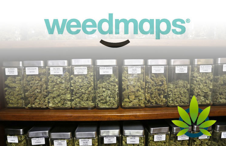 Weedmaps-to-Give-Advertising-Leg-Up-in-Cannabis-Market-for-Licensed-Businesses-in-2020-Only