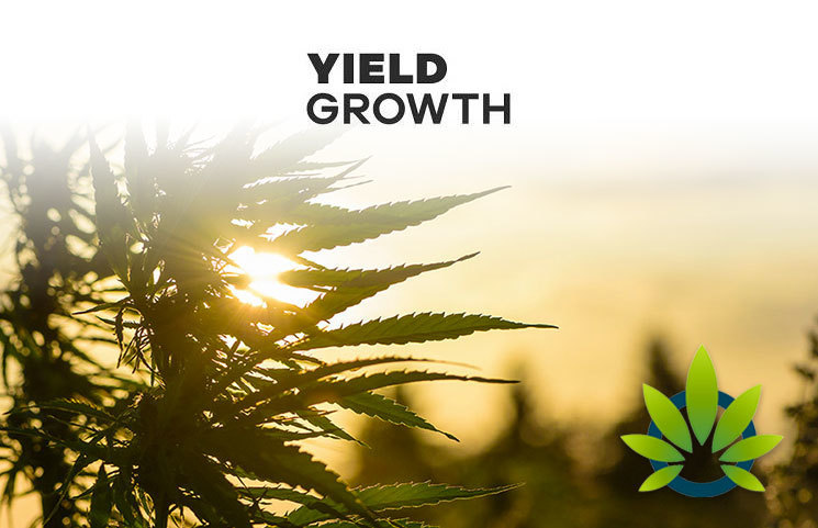 Yield Growth to License 6 CBD Product Formulas to