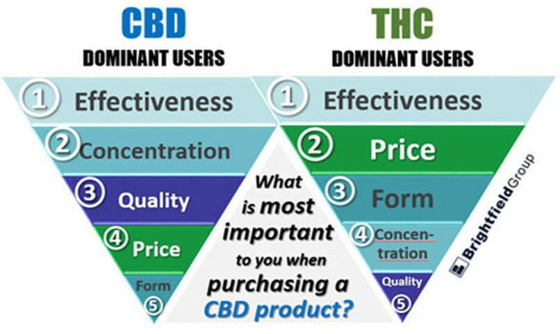 what-cbd-oil-users-value-the-most-research