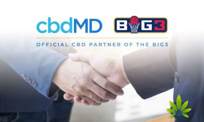 A Look at cbdMD CBD Brand's Ice Cube and BIG3 Basketball League Partnership