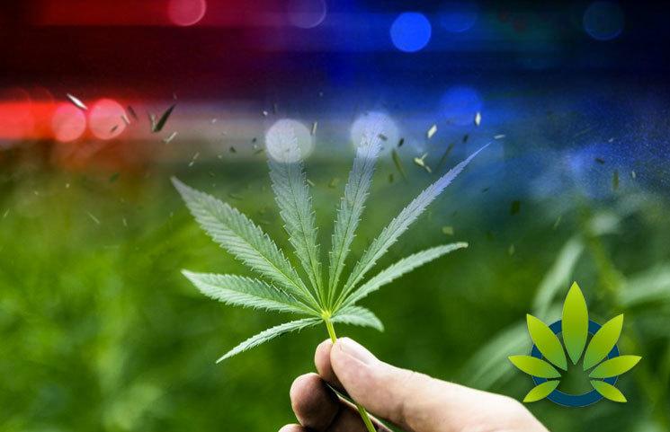 Alabama Authorities Believe Marijuana Hasn't Been Validated as Medicine