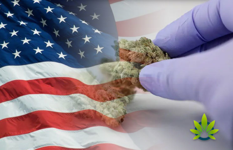 American Society of Cannabis Medicine (ASCM) to Get Involved in Industry Policies