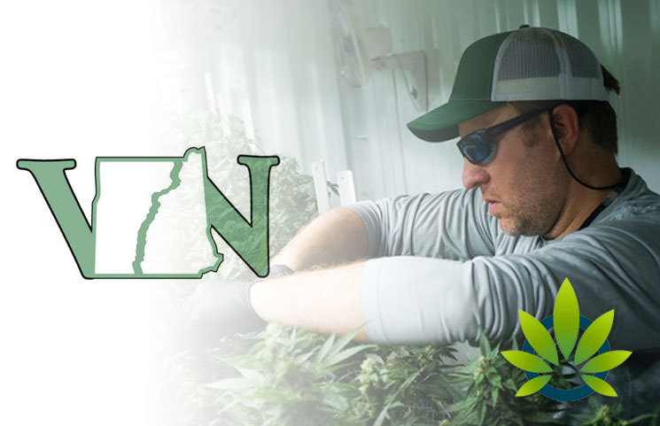 New CBD & Greenhouse Cash Crop Certificate Offered by Vermont Technical College