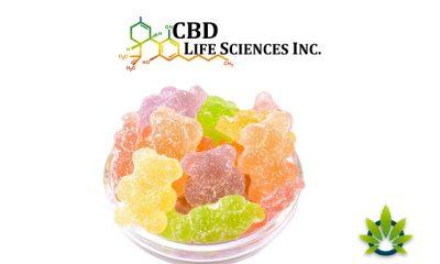 CBD-Life-Sciences-LBC-Bioscience-to-Launch-New-CBD-Gummies-Product-Line