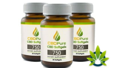 CBDPure Softgels 750: Mega-Dose CBD Made from Organic Hemp Oil