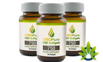 CBDPure Softgels 750: Mega-Dose CBD Made from Organic Hemp Oil