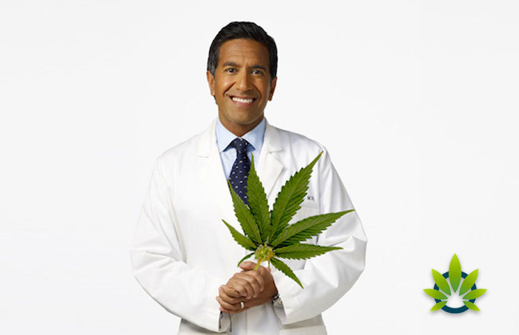 CNN Special Report 'WEED 5: The CBD Craze' by Dr. Sanjay Gupta Review