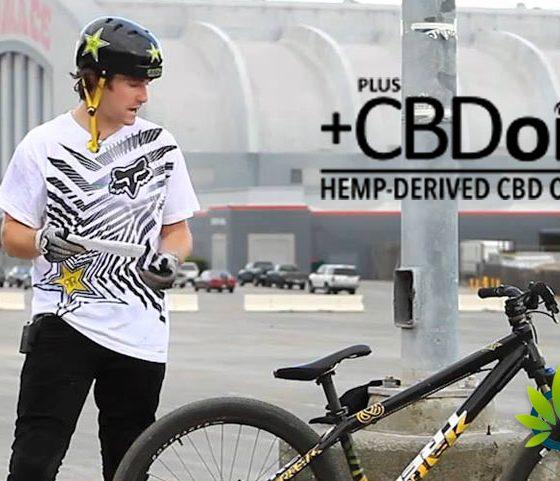 CBD News, Cannabis Trends & Hemp Oil User Guides: TimesofCBD