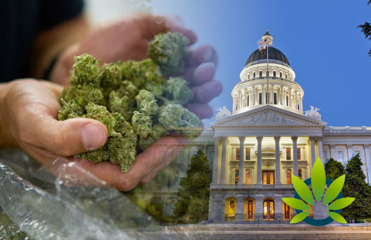 California's Senate Bill 51, on the Cannabis Charter Bank, Expected to take Effect Immediately?
