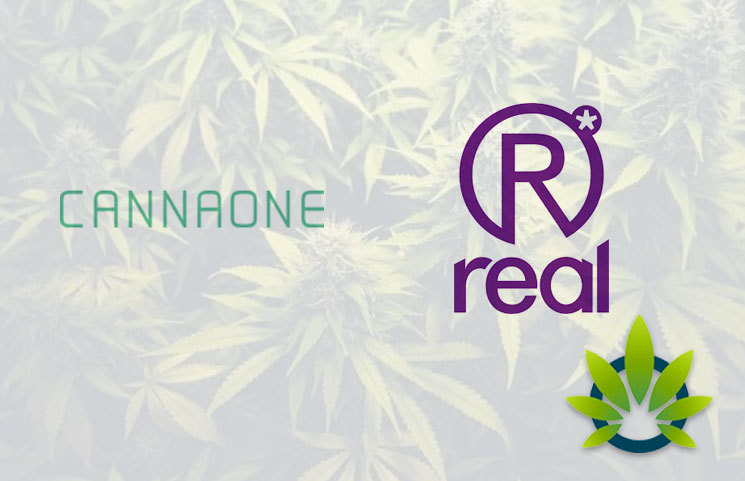 CannaOne to Acquire Real Life Sciences for the duo's BWell CBD Market