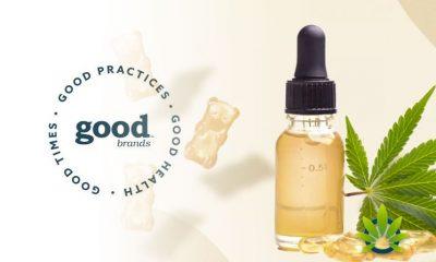 Canndescents-goodbrands-Debuts-3-New-Cannabis-Products-goodmints-goodpacks-goodvapes
