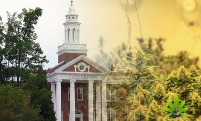 Castleton-University-Launches-Cannabis-Certificate-Program