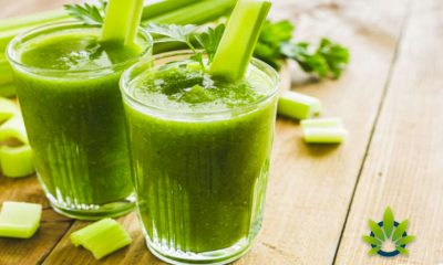 Celery-Juice-and-CBD-are-Trending-Ingredients-at-Food-for-Function