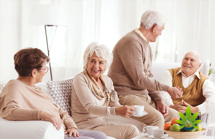 Marijuana and Psychedelics for Senior Citizens Mental Health: A Look at CBD, THC and Psilocybin