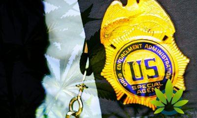DEA, (Omaha, Nebraska Division) Declares They Will Not Prosecute CBD and Hemp Cases