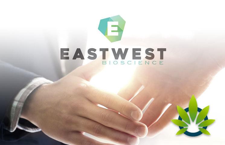 EastWest, Azema Partner to Supply High-CBD Organic Hemp and