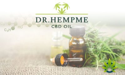 Europe's Top Broad Spectrum CBD Retailer, Dr. Hemp Me, Accredited by Cannabis Trade Association
