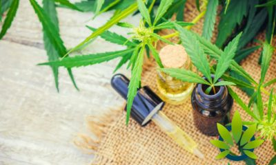 4 Things to Note from the FTC Warning Letters on Players in the CBD Industry