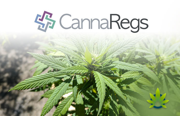 CannaRegs Debuts First CBD Hemp Regulatory and Taxation Platform