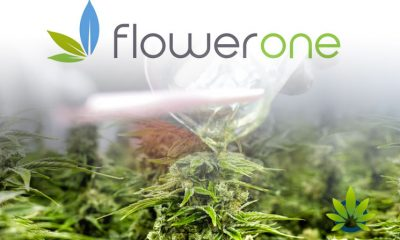 Flower One Opens Nevada's Biggest Tech-Savvy Cannabis Extraction and Production Facility