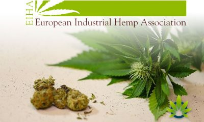 Hemp Association Proposes New Terminology for CBD and 3 Ingredients in the EU Cosing dDatabase