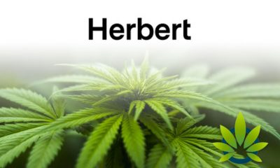 Canopy Rivers' Herbert Works Granted Health Canada License for Cannabis Beverage Research