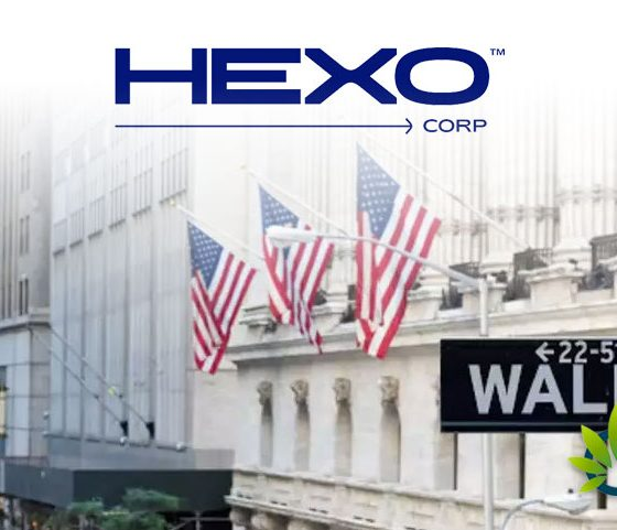 Hexo-Corp-Pot-Stock-Rises-by-11-Thanks-to-Wall-Street-Support