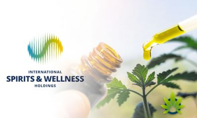 ISWH To Continue Selling P19 CBD Hemp Oils, Gummies, Creams, Drops and Shooters