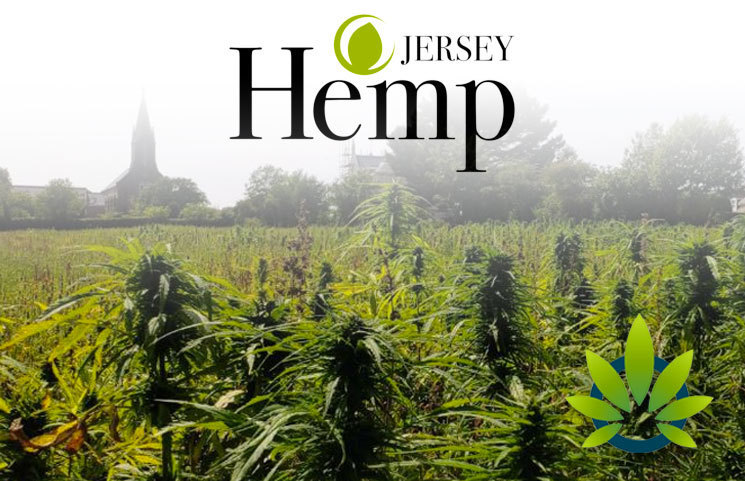 Jersey Hemp Granted First License to Make CBD from Legally Cultivated Hemp Flowers