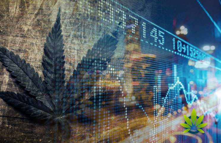 Key-Catalysts-Look-to-Boost-the-Next-Cannabis-Stock-Market-Bull-Run