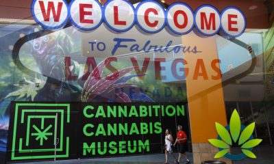 Las Vegas Superstore Planet 13 to Welcome Cannabition Cannabis Art Museum in 2020