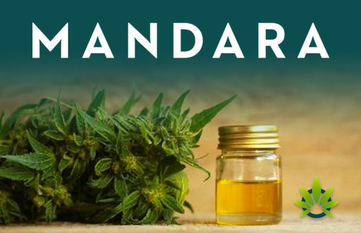 Mandara Offers Consumers Both CBD Products and Wellness Coaching