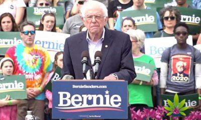 Marijuana Legalization Becomes Bernie Sanders Focal Point, Asks Crowd to Share Arrest Experiences
