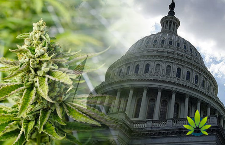 Marijuana-Banking-Bill-Approved-by-House-and-Heads-to-Senate-Lawmakers-and-Advocates-React