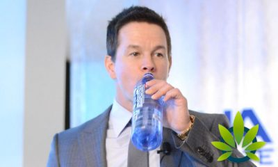 Mark Wahlberg, Sean 'Diddy' Combs and Jillian Michaels Join the CBD Craze