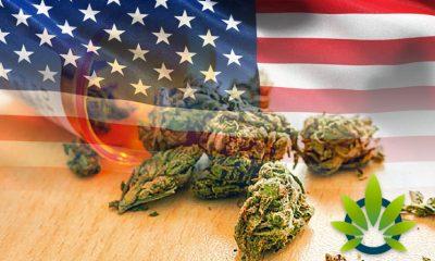 Medical Marijuana Progresses Across the US, Except for These Three States