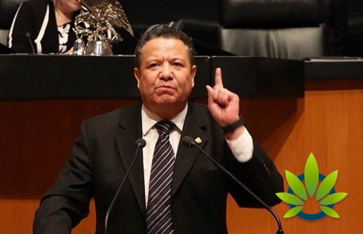 Mexican Senator Aims to End Criminal Activities by Filing for Cannabis Legalization A Month Early