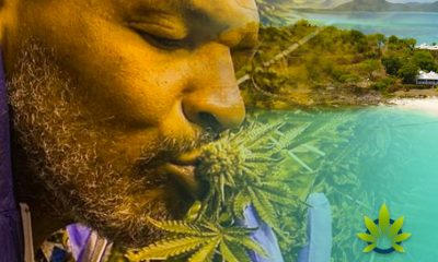 Mike Tyson Wants to Bring Cannabis Farm to Caribbean in Antigua and Barbuda