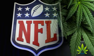 New NFL Cannabis Penalties Proposal Could Lower Player Fines, Reduce Testing Window