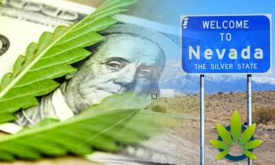 Nevada Magnificently Makes $100 Million in Cannabis Tax Revenue in 2019, Over $60 Million in Sales
