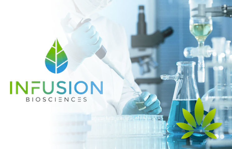 New Cannabinoid Testing Safety Methods Developed by Infusion Biosciences