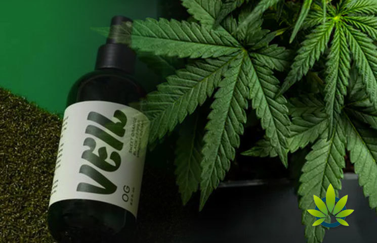 New Veil Marijuana Scent Masking Spray Launches to Eliminate Cannabis Odors