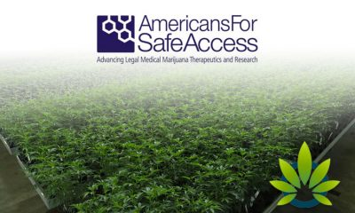 New Medical Cannabis Patient's Travel Guide by Americans for Safe Access is Available