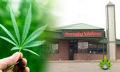 Newton Family Video in Iowa Forced to Halt the Sale of CBD Oil Products