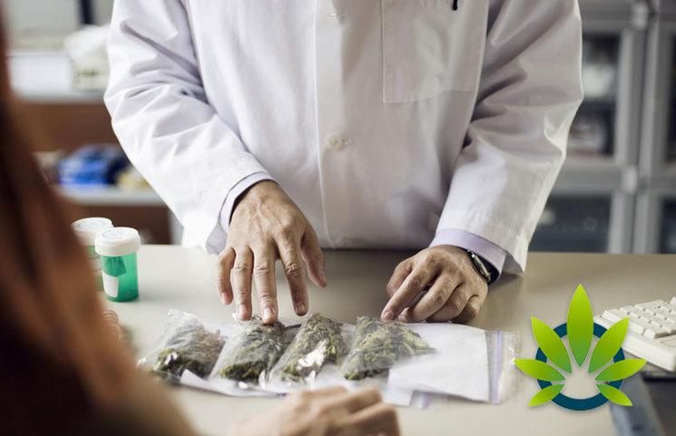 Less than 100 Doctors in Florida Certify Medical Marijuana