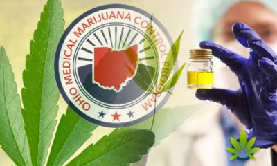 Ohio Goes Against Medical Use of Marijuana for Autism and Anxiety